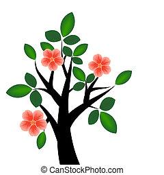 flor, ramo