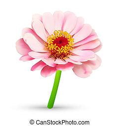 flor, resumen, flor, ilustración