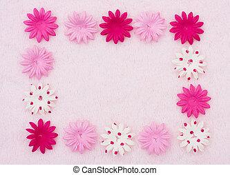 flor rosa, frontera