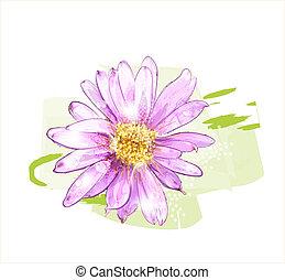 flor rosa, gotas, rocío
