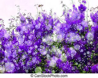 flor, roxo, primavera, neve, chuveiro, fundo