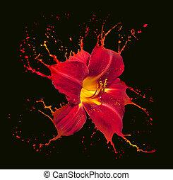 flor, salpicaduras, rojo