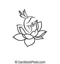 flor, señal, aves