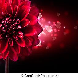 flor, sobre, desenho, fundo, dahlia, pretas