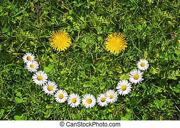 flor, sorrizo, rosto