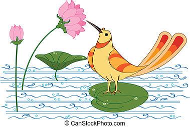 flor, (sugar, néctar, loto, water), bebida, pájaro