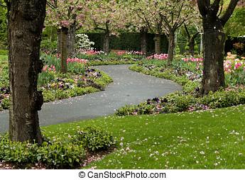 flor, trayectoria, jardín
