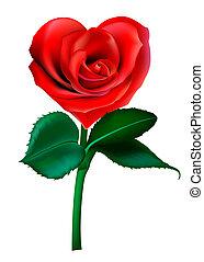 flor, valentine