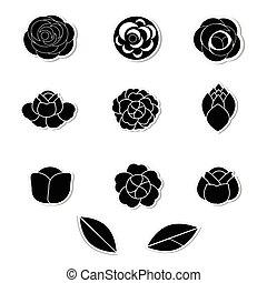 flor, vector, blanco, plano de fondo