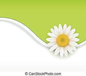 flor, verde, Plano de fondo