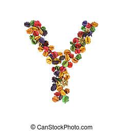 flor, y, alfabeto, isolado, secado, fundo, branca