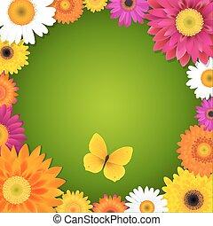 flor, y, mariposa