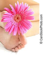 flor, y, pies