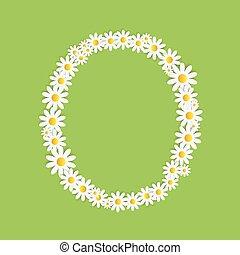 flora, alfabet, wektor, projektować, stokrotka, illustartion