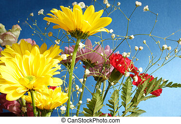 Bunch of flowers with blue background