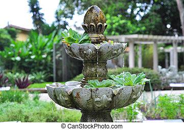 flora, fontein tuin, braziliaans