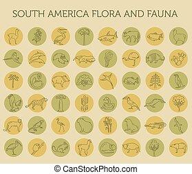 flora, línea, américa, elements., plano, icono, fauna, conjunto, vida, sur, aves, simple, animales, mar