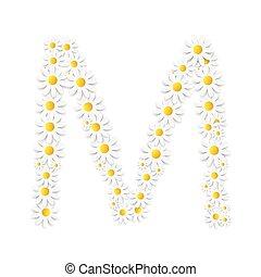 flora, margherita, disegno, alfabeto, vettore, illustartion