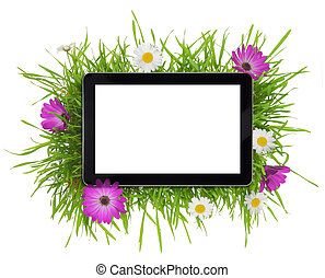 flora, tableta, pantalla, rodeado, blanco, blanco