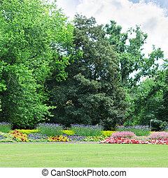 floraison, parc, parterres fleurs