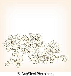 floral, abstratos, vetorial, ilustração