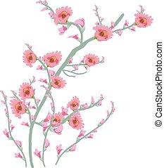 floral, acuarela, arte, pintura