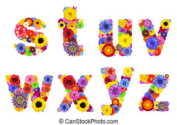 Floral Alphabet Isolated on White - Letters S, T, U, V, W, X, Y, Z