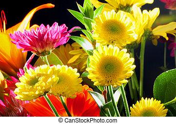Floral Arrangement - Floral arrangement isolated over a...