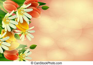 floral, arrière-plan., tulips., pâquerettes