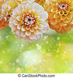 Floral background - Background with yellow flowers and shiny...