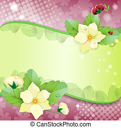 Floral background, colorful pansies
