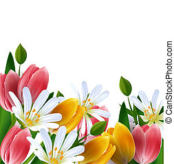 Floral background. Daisies and tulips.