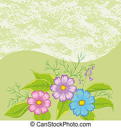 Floral Background, Flowers Cosmos