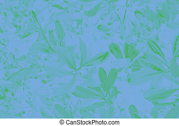Floral background. Green ficus leaves on a blue background