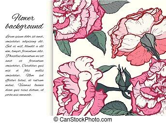 Hand drawn vector botanical illustration