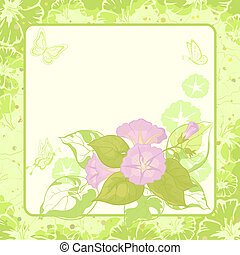 Floral background, Ipomoea - Ipomoea flowers and butterfly...