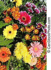 Floral background of bright autumn colors