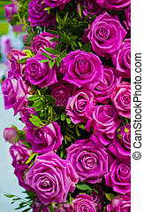 floral background of roses