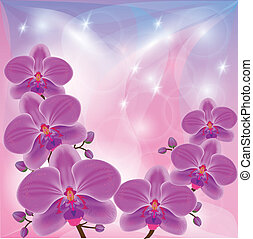 Floral background with exotic flowers orchids