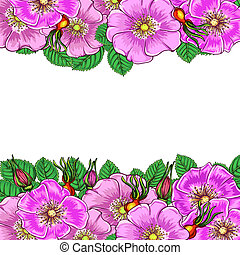 floral background with flowers rosehip
