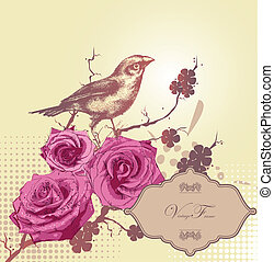 floral background with pink roses a