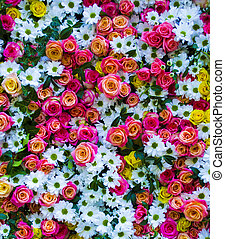 floral background with roses and chrysanthemums. roses
