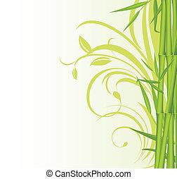 floral, bambu, experiência verde