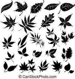 floral, black , vastgesteld ontwerp, communie