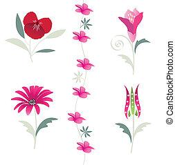 floral, bloem, communie