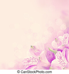Floral blossom background with pink flowers