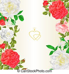 Floral border vertical background with blooming roses vector.eps