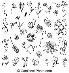 floral, bosquejo, elementos, diseño, su