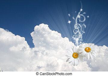 floral, céu, fundo