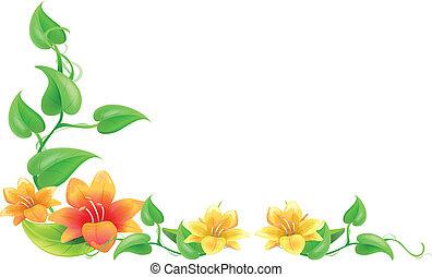floral, cadre